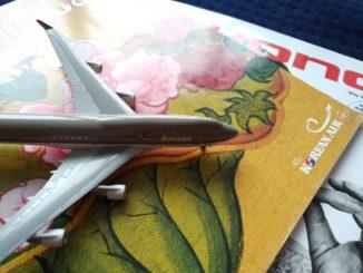 Übernahme von Asiana Airlines durch Korean AirLines (KAL) im November 2020